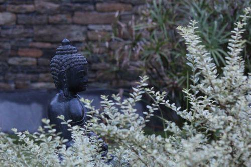 Buddha,meditating,in,peace