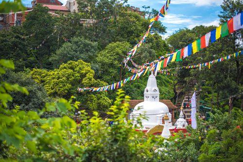 Greenery,around,swyambhunath
