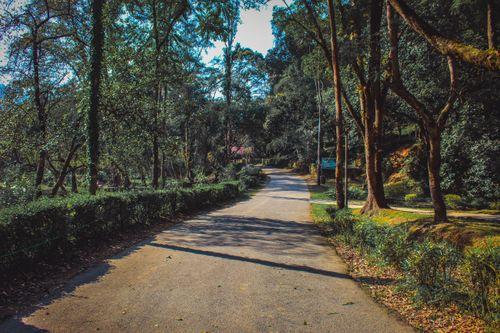 godawari,botanical,garden
