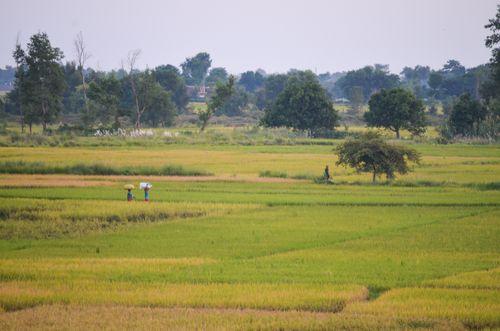 rural,lifestyle,western,nawalparasi,nepal