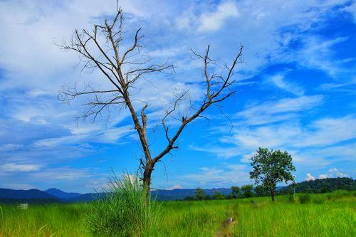unknown,landscape