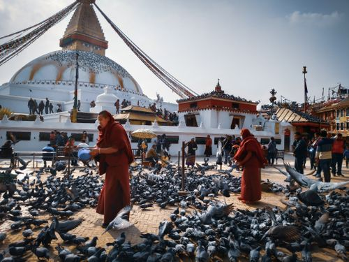 picture,show,beauty,nepal,shows,people,love,place,pigeons,sign,peace