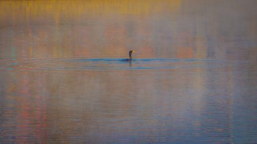 beautiful,scenario,taudaha,lake