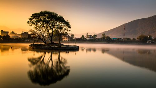 reflection,tree,photo,taudah,kathmandu,nepal