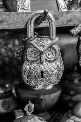 lock,shape,owl