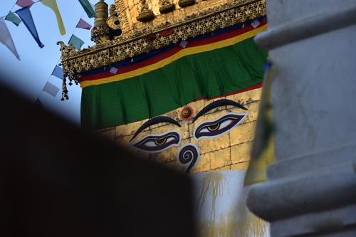 monkey,temple,swayambhunath,aka,normal,day,kathmadnu,nepal