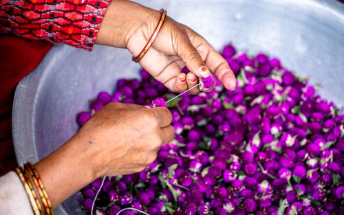 making,handmade,flower,garland,bhaitika,tihar,festival,bhaktapur,nepal