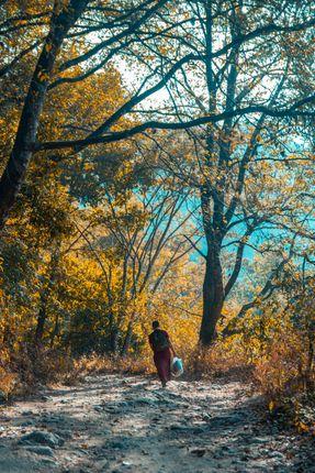 monk,walking,shivapuri,national,park