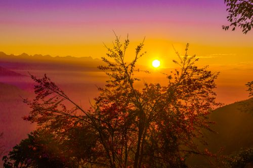 morning,sunrise,view,colorful,nature