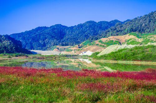 landscape,nature,color,lake,forest,nepal