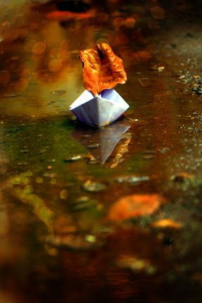 paper,boat,reflection,sms,photography