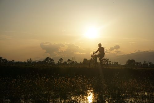 bicycle,rider,riding,chitwan,nepal