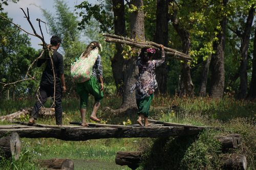villagers,heading,home,collecting,firewood