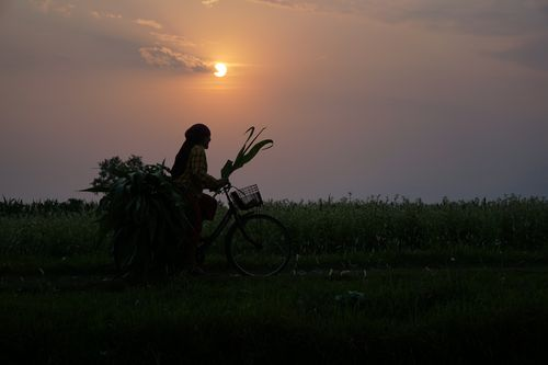 local,woman,cycling,home
