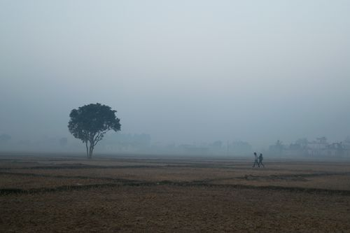 couple,walks,field,bulbule,nepalgunj,foggy,morning