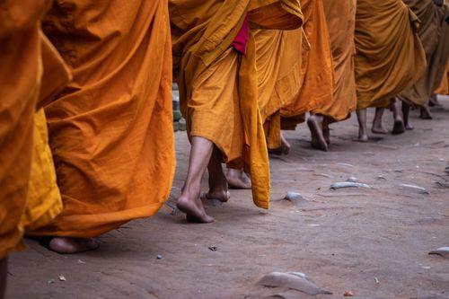 line,young,monks,walk,barefeet,path