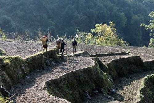villagers,hiking,market
