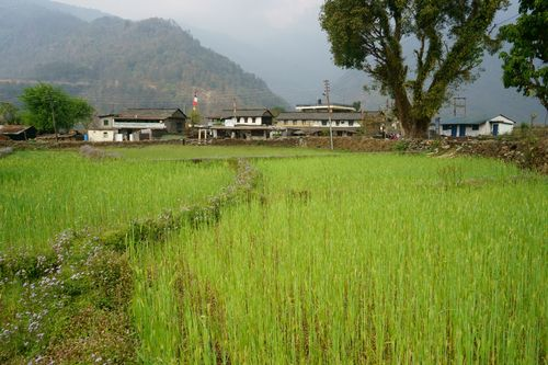 view,chaura,gurung,village,pokhara,nepal