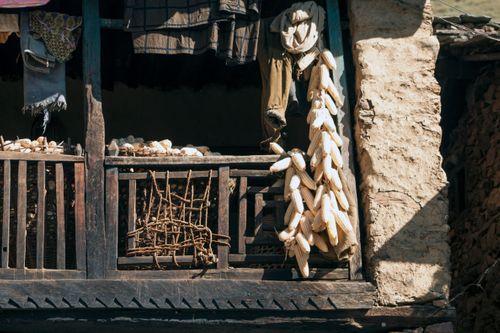 nepali,house,drying,corns,rukum,nepal
