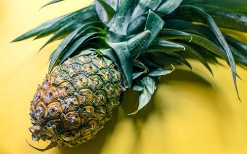 closeup,capture,pineapple,fruits,kathmandu,nepal