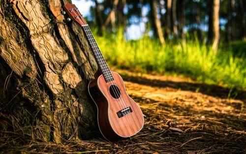 musical,instrument,ukulele,park,kathmandu,nepal