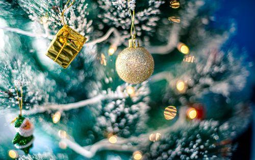 decoration,christmas,tree,lights