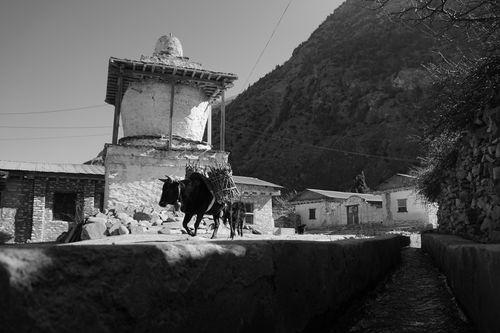 street,mustang,nepal