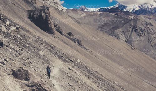 Find  the Image A,tough,path,to,walk,in,,way,to,the,famous,Tilicho,Lake and other Royalty Free Stock Images of Nepal in the Neptos collection.