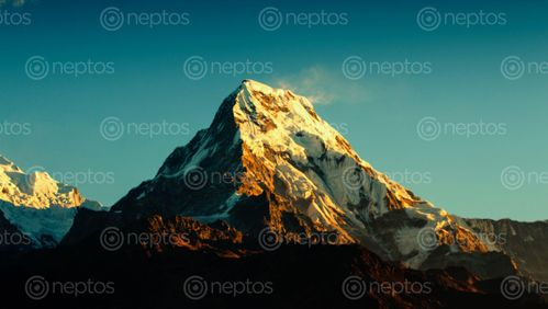 Find  the Image Mount,Annapurna,South,,Poonhill,,Nepal and other Royalty Free Stock Images of Nepal in the Neptos collection.
