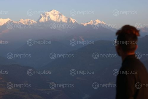 Find  the Image view,mt,dhaulagiri  and other Royalty Free Stock Images of Nepal in the Neptos collection.