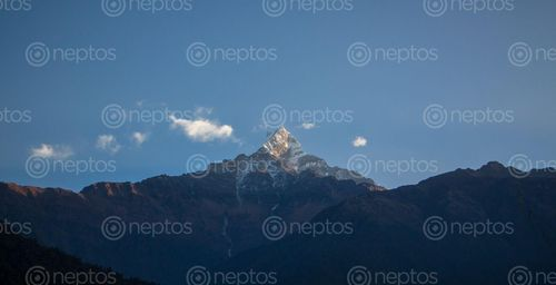 Find  the Image fantastic,view,mardi,himal  and other Royalty Free Stock Images of Nepal in the Neptos collection.