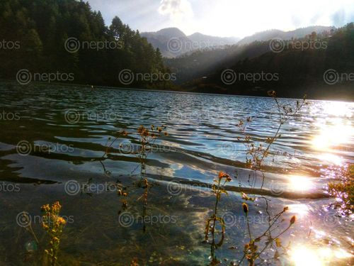 Find  the Image beautiful,photo,captured,lake,side,kulekhani,dam  and other Royalty Free Stock Images of Nepal in the Neptos collection.