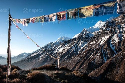 Find  the Image tilicho  and other Royalty Free Stock Images of Nepal in the Neptos collection.