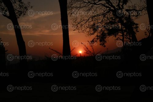 Find  the Image sunset,nil,barahi  and other Royalty Free Stock Images of Nepal in the Neptos collection.