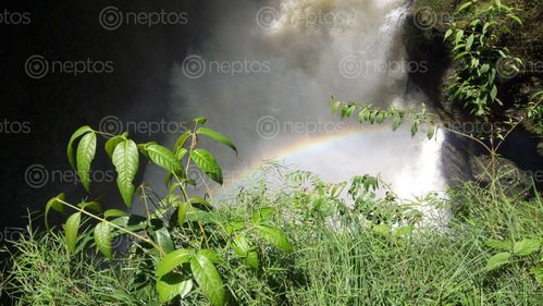 Find  the Image davis,falls,pokhara  and other Royalty Free Stock Images of Nepal in the Neptos collection.