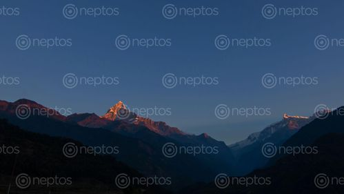 Find  the Image mount,fishtail,annapurna,range,photo,ghachok,pokhara,nepal  and other Royalty Free Stock Images of Nepal in the Neptos collection.