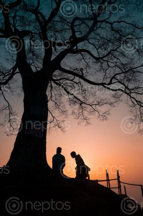 Find  the Image view,sunrise,form,single,tree  and other Royalty Free Stock Images of Nepal in the Neptos collection.