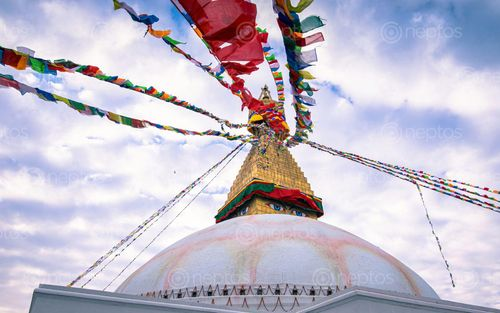 Find  the Image beautiful,evening,view,baudha,stupa,kathmandu,nepal  and other Royalty Free Stock Images of Nepal in the Neptos collection.