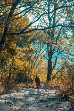 Find  the Image monk,walking,shivapuri,national,park  and other Royalty Free Stock Images of Nepal in the Neptos collection.