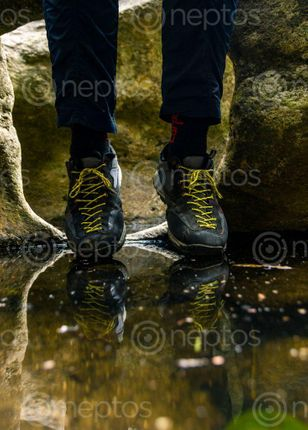 Find  the Image reflection  and other Royalty Free Stock Images of Nepal in the Neptos collection.