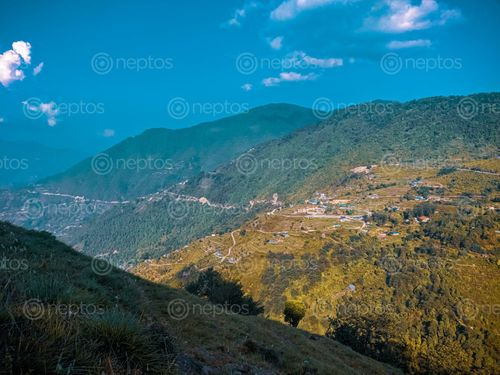 Find  the Image walking,pace,nature,delighting,refreshing  and other Royalty Free Stock Images of Nepal in the Neptos collection.