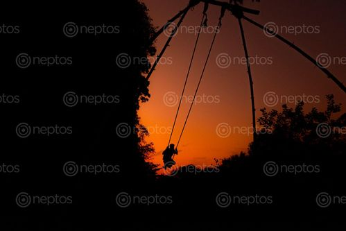 Find  the Image boy,swinging,dashain  and other Royalty Free Stock Images of Nepal in the Neptos collection.