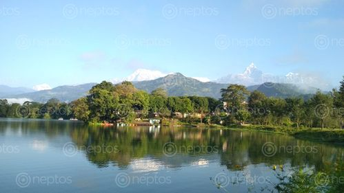 Find  the Image beautiful,phewa,lake,surrounding  and other Royalty Free Stock Images of Nepal in the Neptos collection.