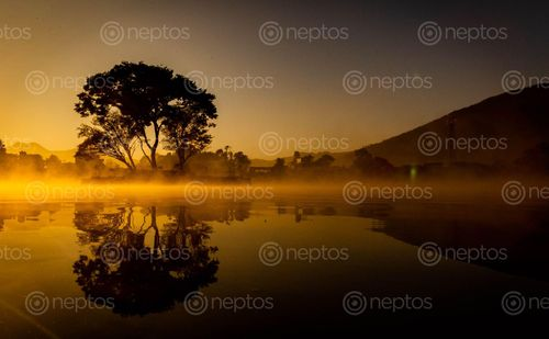 Find  the Image shot,images,sunrise,taudaha  and other Royalty Free Stock Images of Nepal in the Neptos collection.