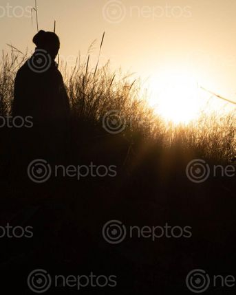 Find  the Image sunrise,silhouette,kathmandu  and other Royalty Free Stock Images of Nepal in the Neptos collection.