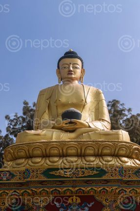 Find  the Image golden,statue,buddha,park,swayambhunath,kathmandu,nepal  and other Royalty Free Stock Images of Nepal in the Neptos collection.