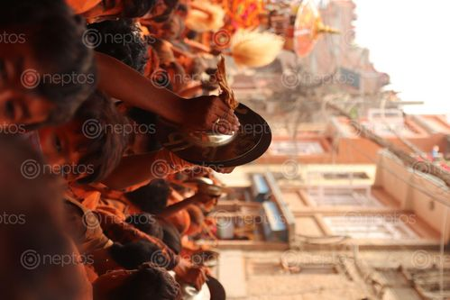 Find  the Image image,thimi,bhaktapur,bisket,jatra,newar,festival  and other Royalty Free Stock Images of Nepal in the Neptos collection.