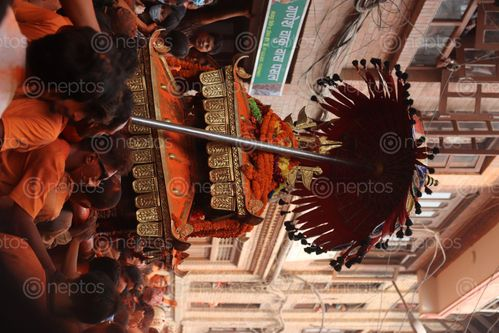Find  the Image image,thimi,bhaktapur,bisket,jatra  and other Royalty Free Stock Images of Nepal in the Neptos collection.